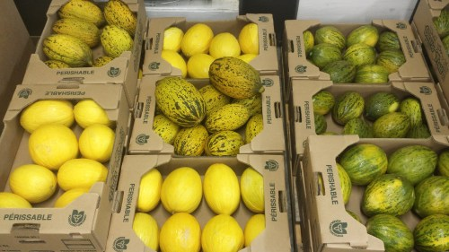 canary melon canadian wholesale items