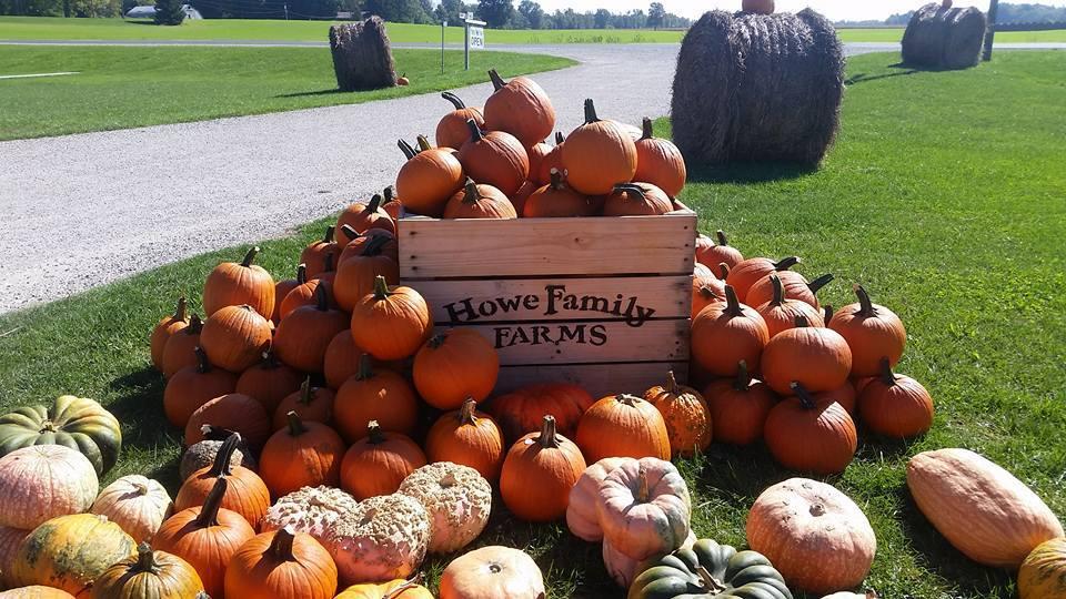 pumpkin farm howes family farm