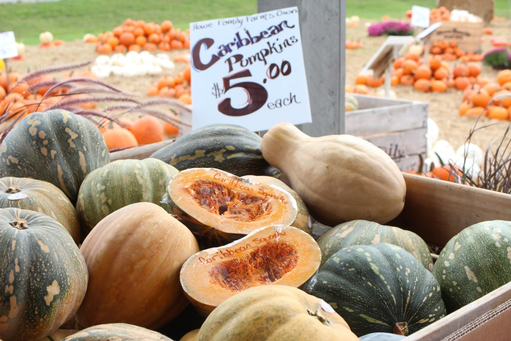 Caribbean pumpkin displayed at our market