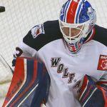 CHRIS NELL REASSIGNED TO ECHL'S ADIRONDACK THUNDER