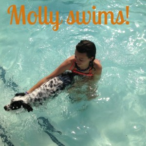 molly swims