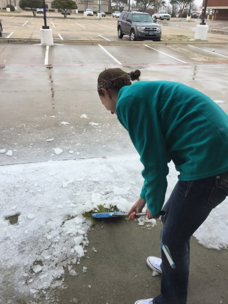 ally scraping ice