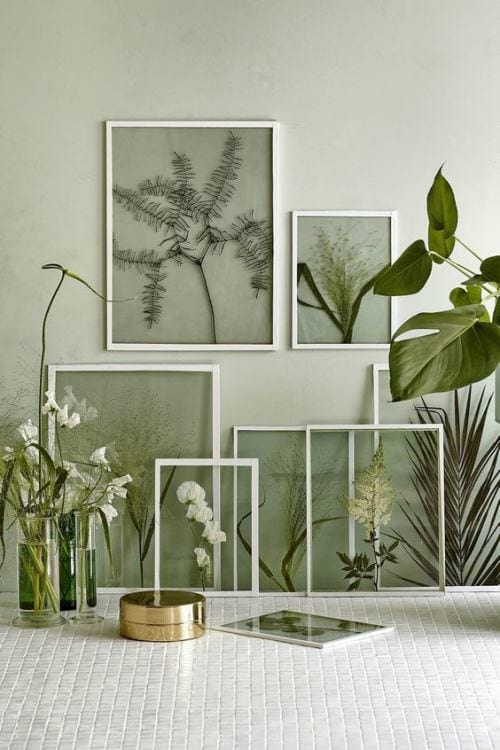 2017 Decor Trends: Botanical Spaces 5