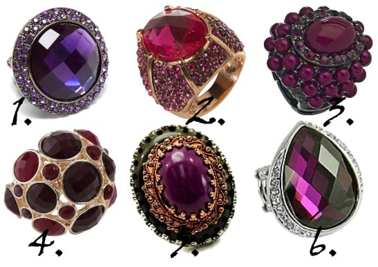 Savory Fruits: Berry and Plum Rings Under $50 3
