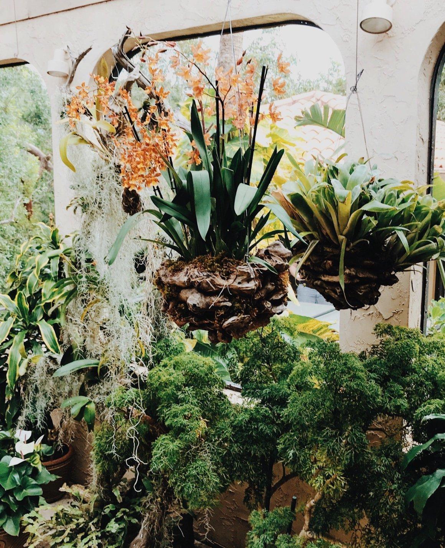 bohemian-decor-trend-indoor-oasis