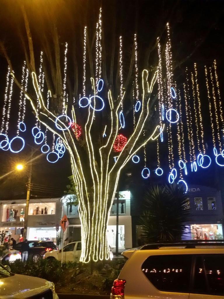 zona T tree