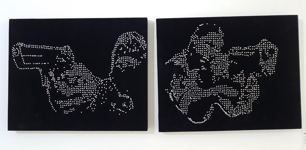 Una linea de polvo Museum of Contemporary Art Bogota