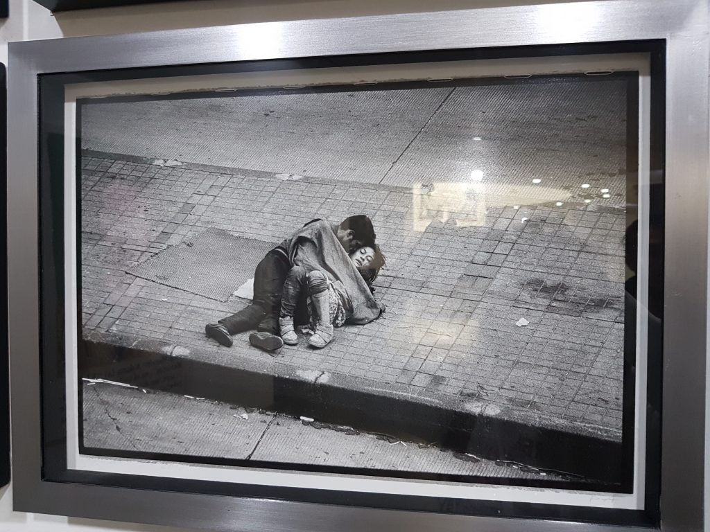 Contact Shits Museum of Contemporary Art Bogota