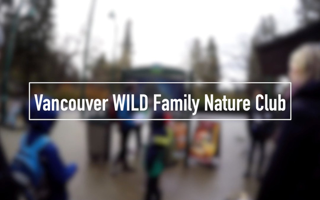Vancouver WILD Family Nature Club Walk at Stanley Park [VIDEO]