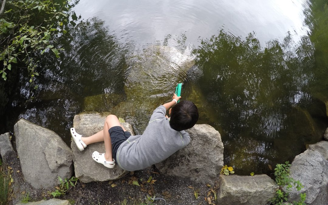 Unschooling Journal July 28 – August 3, 2019