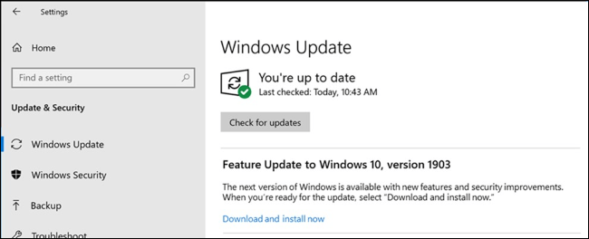 Choice to install a feature update in Windows Update