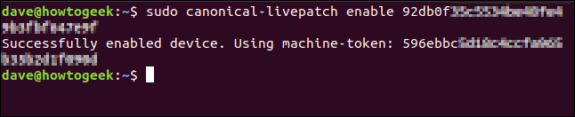 Livepatch enabled verification message in a terminal window