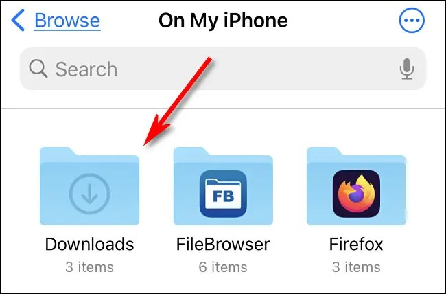 The Downloads Folder in Files on the iPhone.