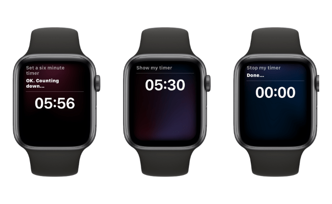 Using Siri To Set a Timer on Apple Watch