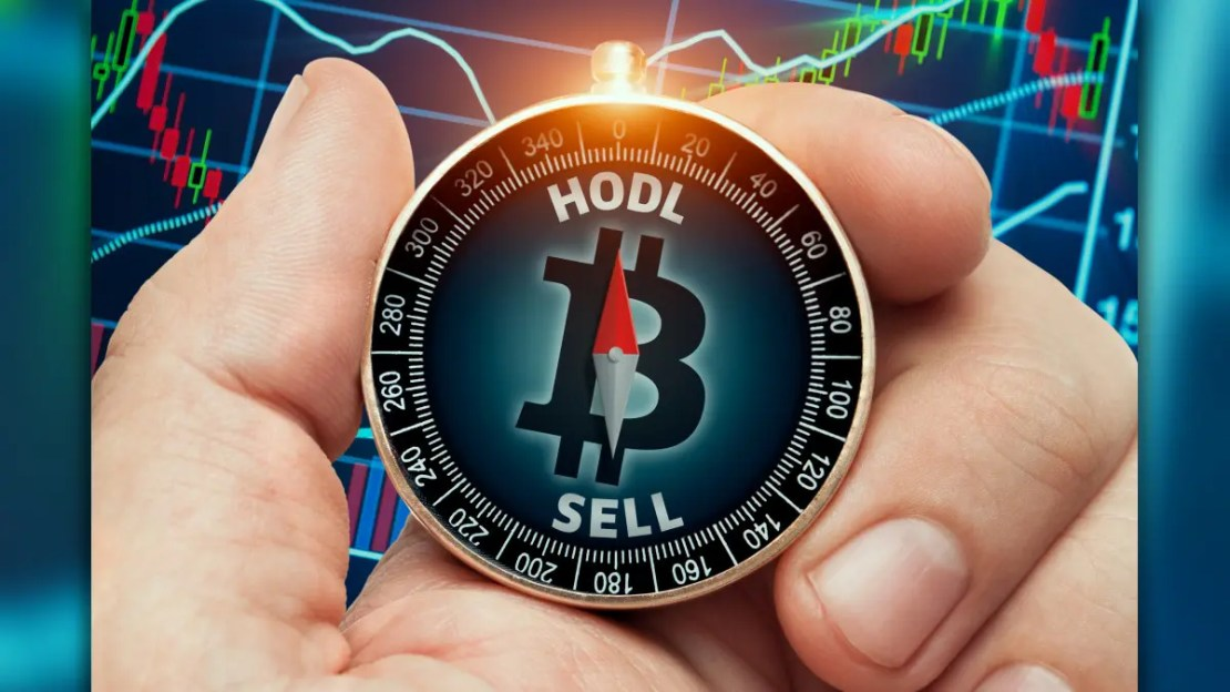 A person with a HODL compass.