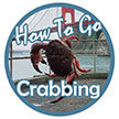How To Go Crabbing