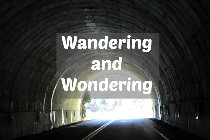 Wandering and Wondering