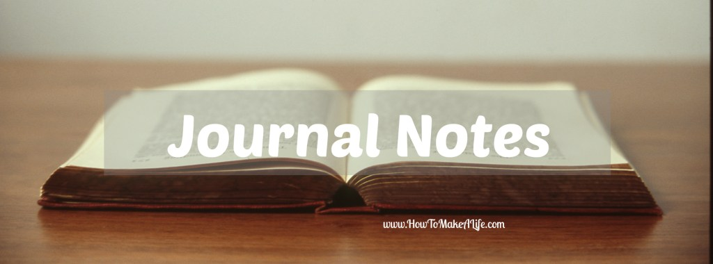 Journal Notes 1