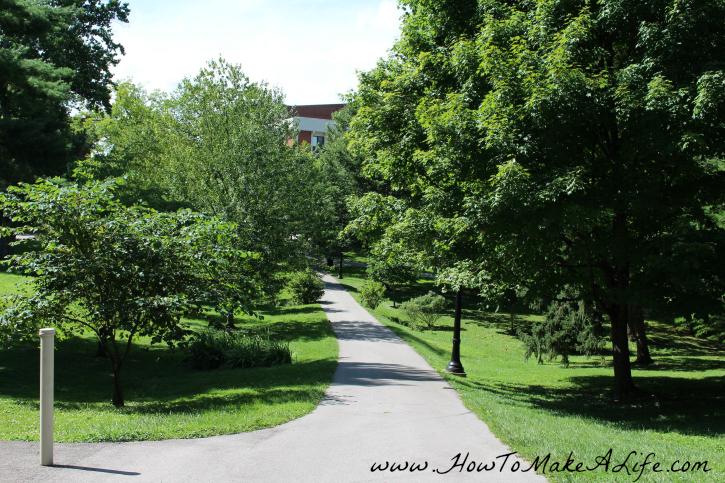 EKU Walk way