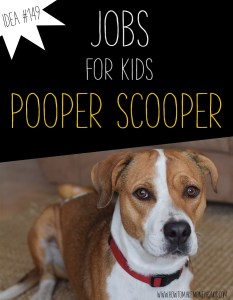 How To Make Money For Kids Scooping Poop
