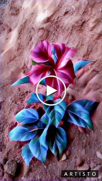 Artisto_Prisma_video_effect_app