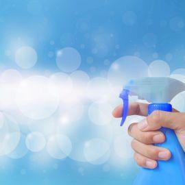 Honest Disinfectant Spray Review