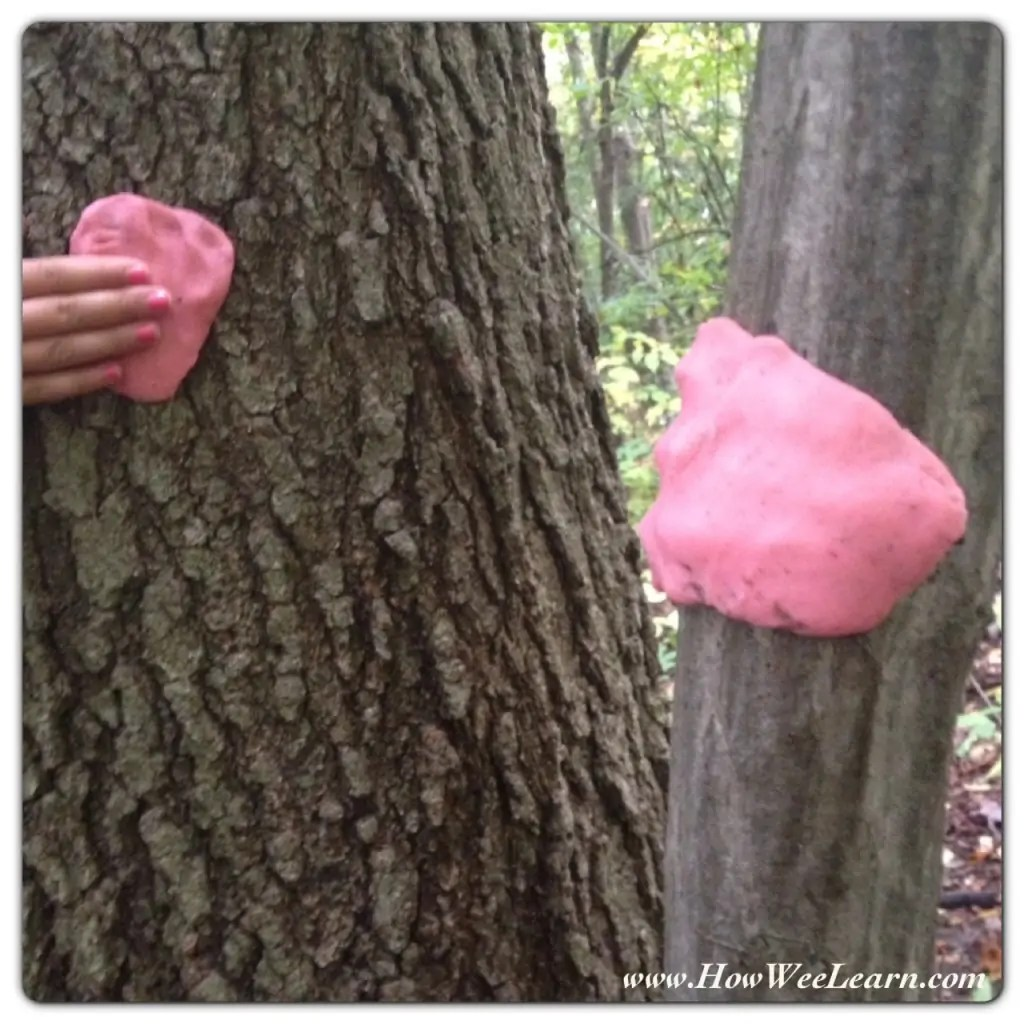 Five Senses Activities For Kids Outdoors