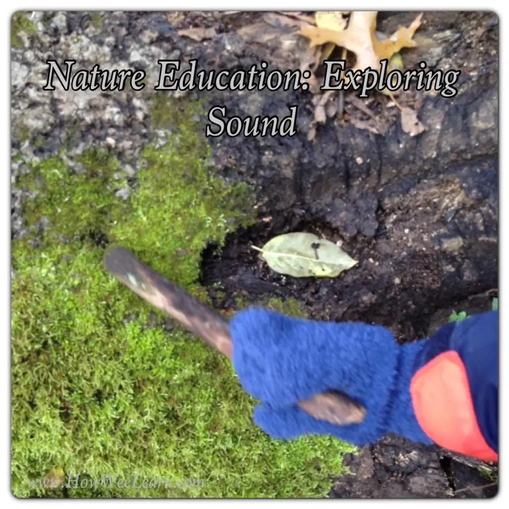 Nature Education Exploring Sound Part 1 Of The 5 Senses