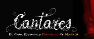 Ir al evento: Suma Flamenca 2014 en CANTARES