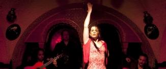 Ir al evento: Suma Flamenca 2014 Jesús Carmona, Karime Amaya, Paloma Fantova
