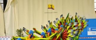 Ir al evento: XVIII Trofeo Internacional Latina de Grupos Show