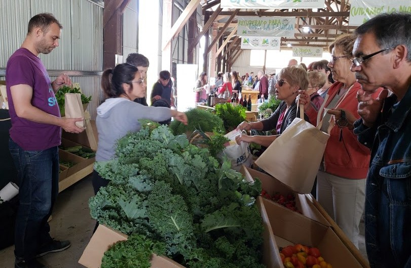 Sábado 12 vuelve la Feria Sustentable en La Trocha