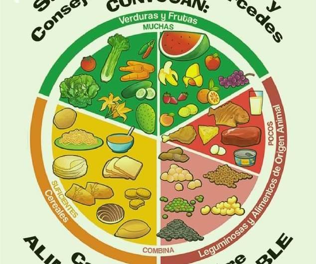 Salud y educación: capacitación en alimentación saludable para cocineros escolares