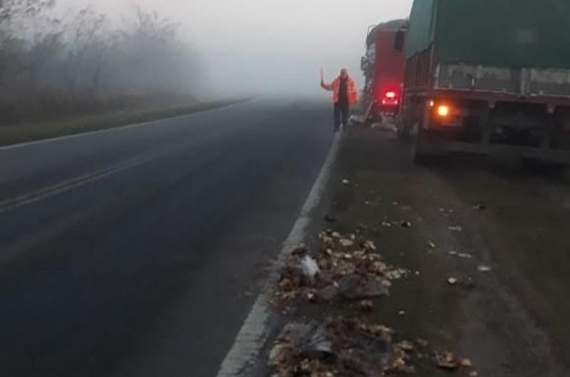 Camion vuelca su mercadería en Ruta 41