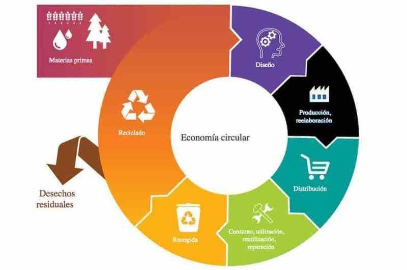 Utilizando la economía circular en la basura