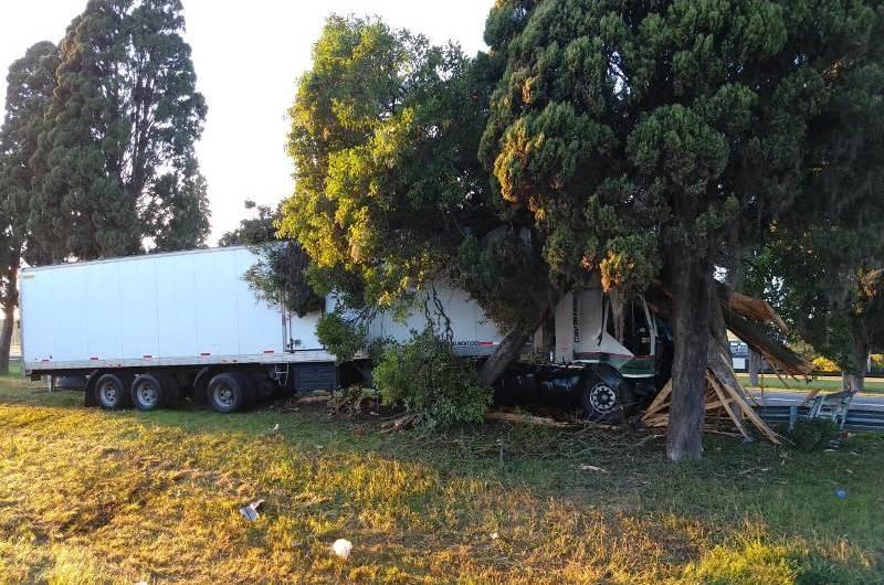 Se durmió chofer e impactó con los árboles de ruta 5