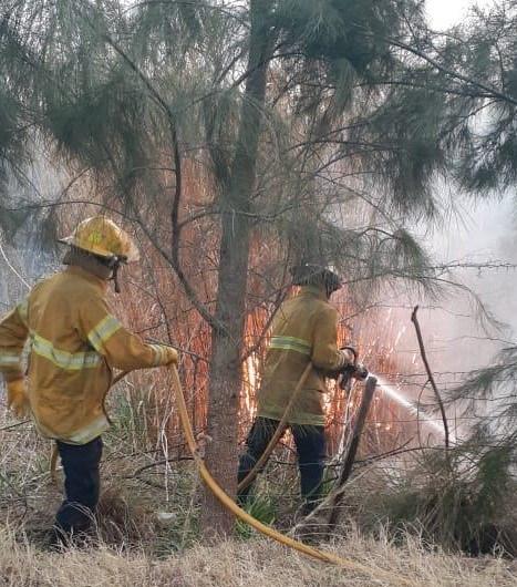 Incendios: un basural clandestino y pastizalles en el parque