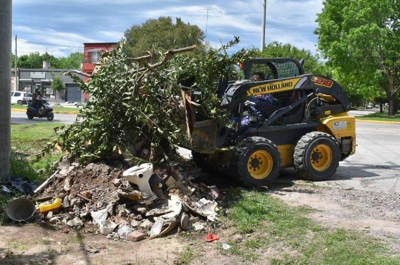 Limpieza urbana destacando la importancia de la «colaboración del vecino»