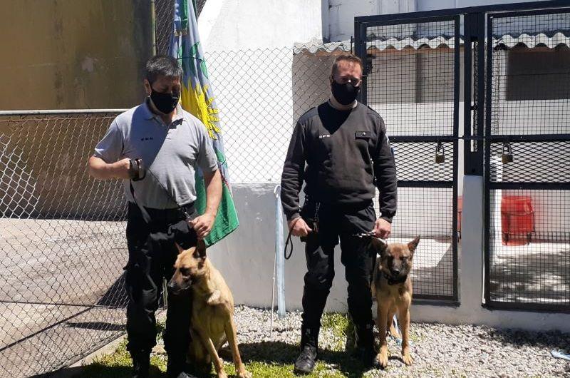 La Unidad 5 contará con dos canes para incrementar la seguridad del penal