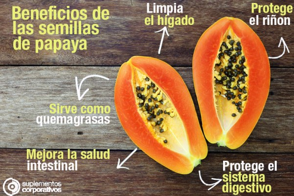 Resultado de imagen de papaya beneficios semillas