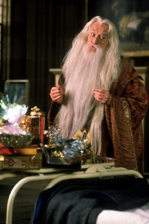 Richard Harris sebagai Dumbledore