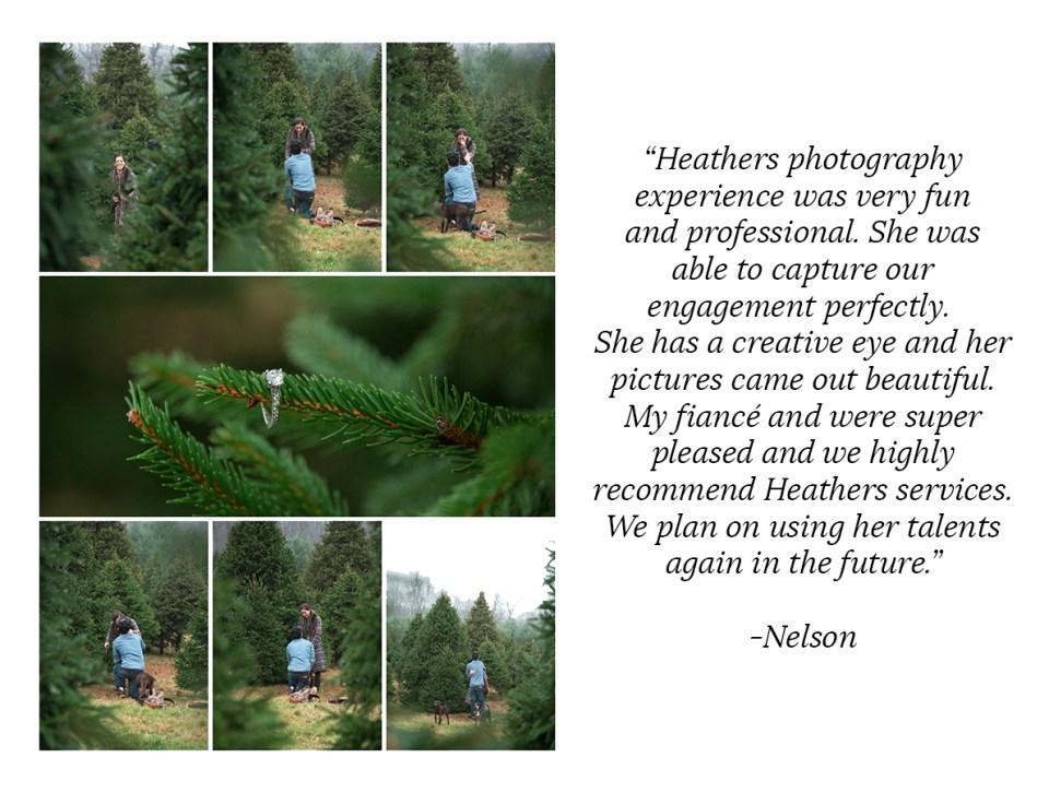 Heather-Palecek-Photography-Reviews