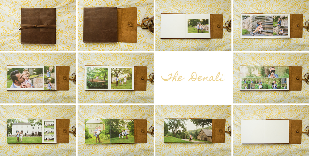 The Denali Album