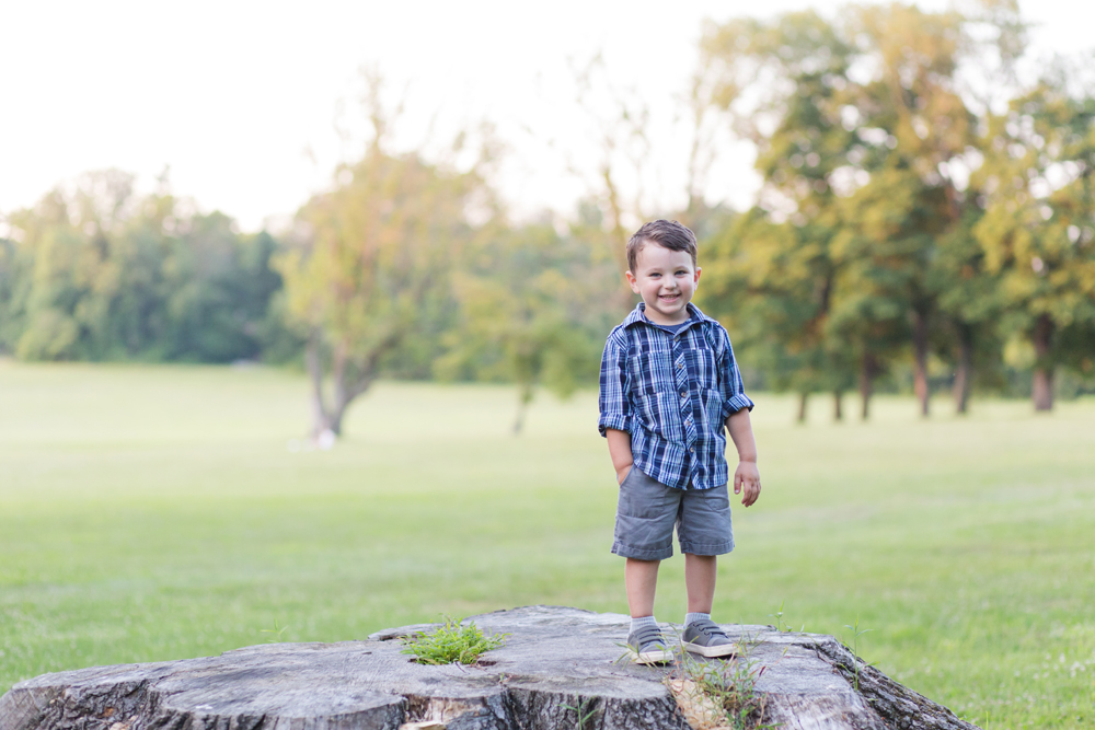 boy standing on tree stump