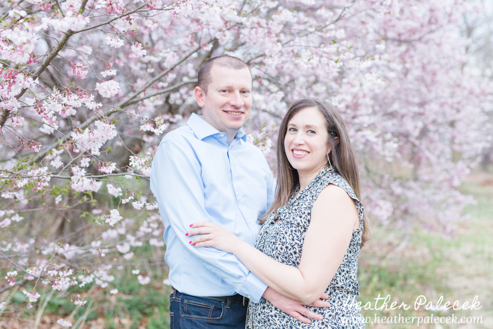 husband and wife maternity session with cherry blossom tree