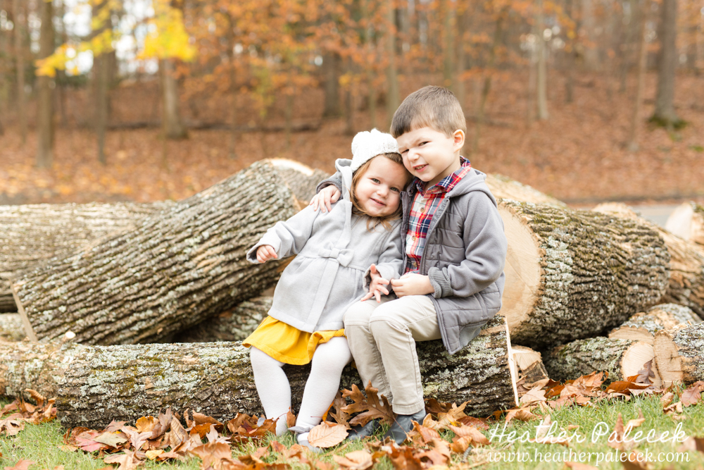 siblings sit on pile of logs at Fall Family Photo Shoot