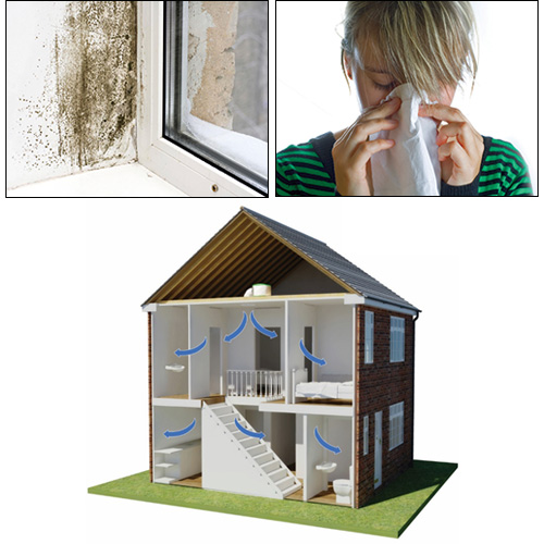 A fifth of householders reported that they experienced condensation and mould growth in the home