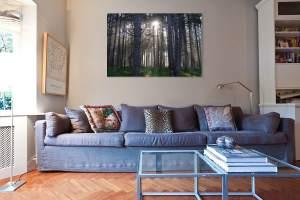 Art Photography Home Decor