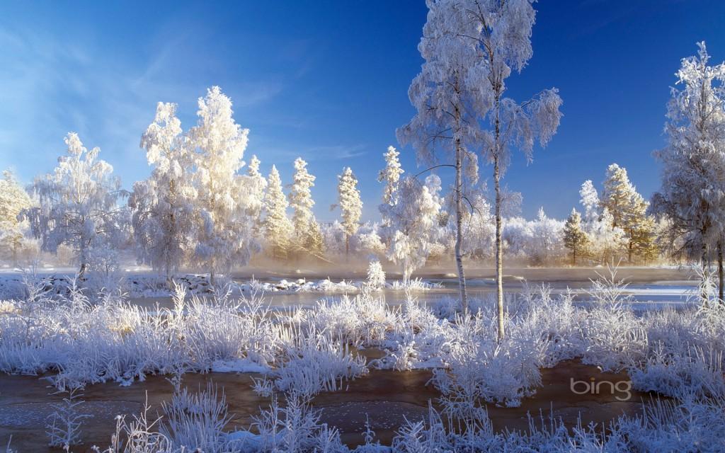 Borders Year Snow New Happy