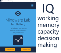 mindware lab test battery